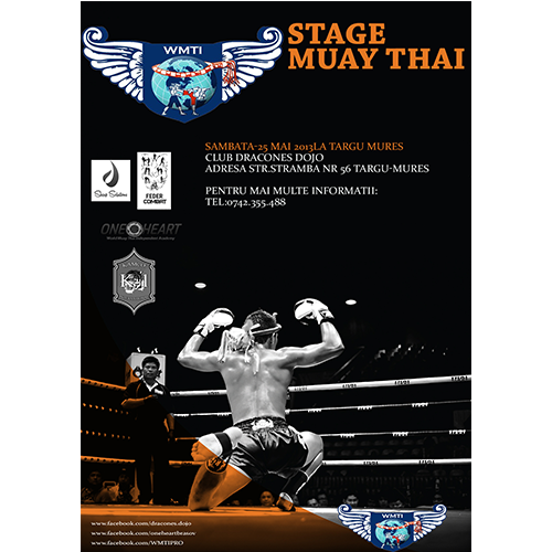 Muay Thai/Boxing Poster