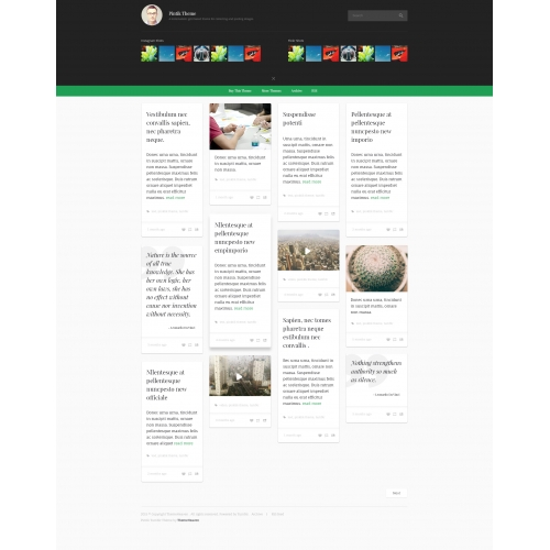 Thumblr Theme Design